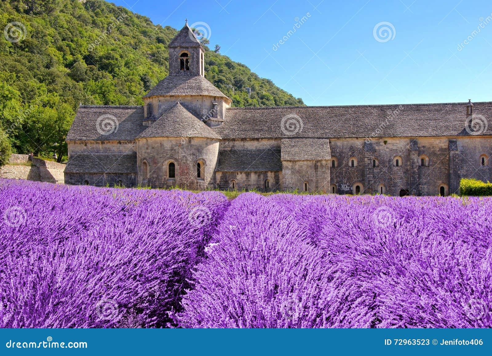Abbaye De Senanque Avec La Belle Lavande, Provence, France ...