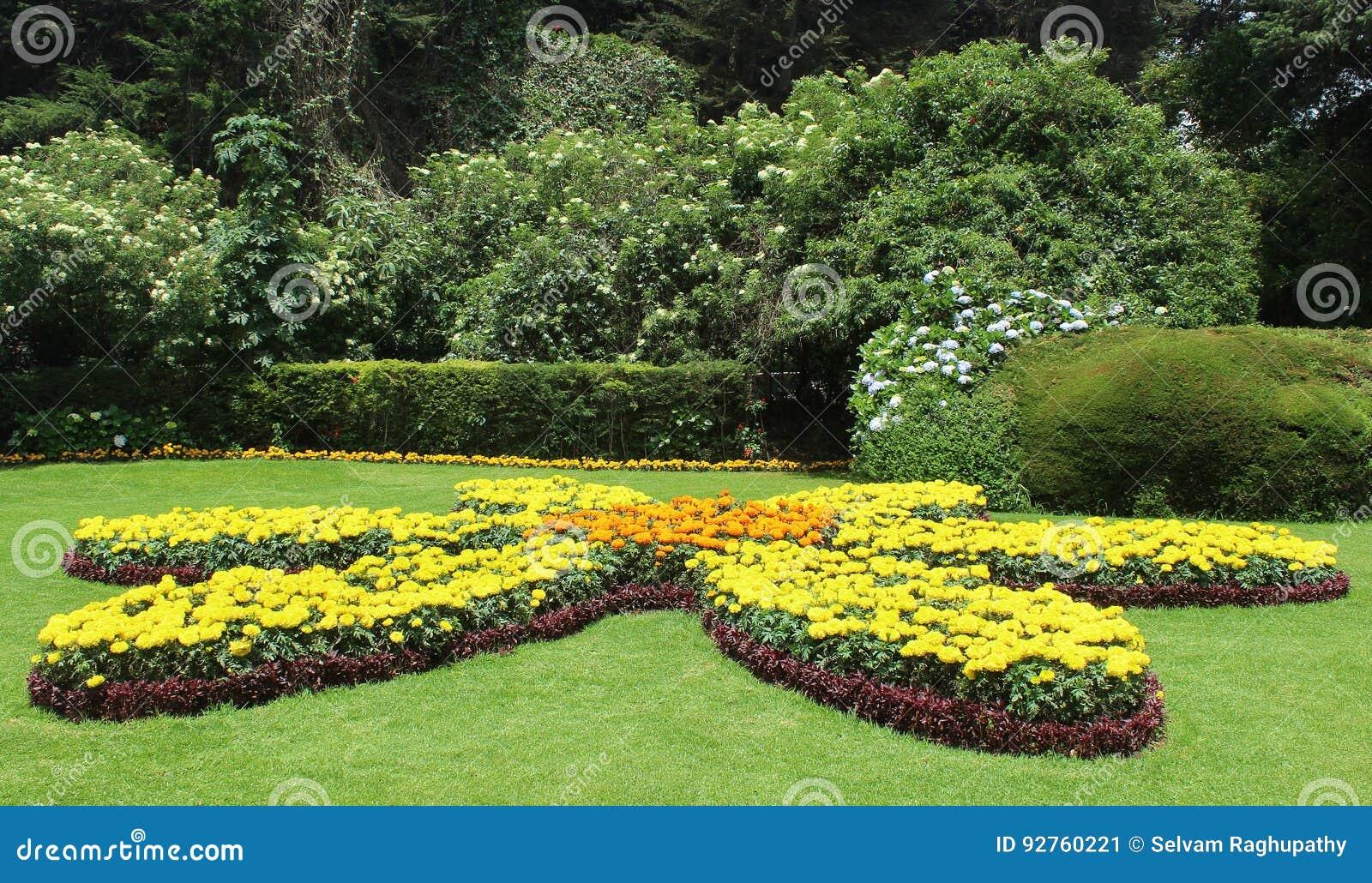 Giardini bellissimi immagini gallery of with giardini for Alberi da giardino con fiori