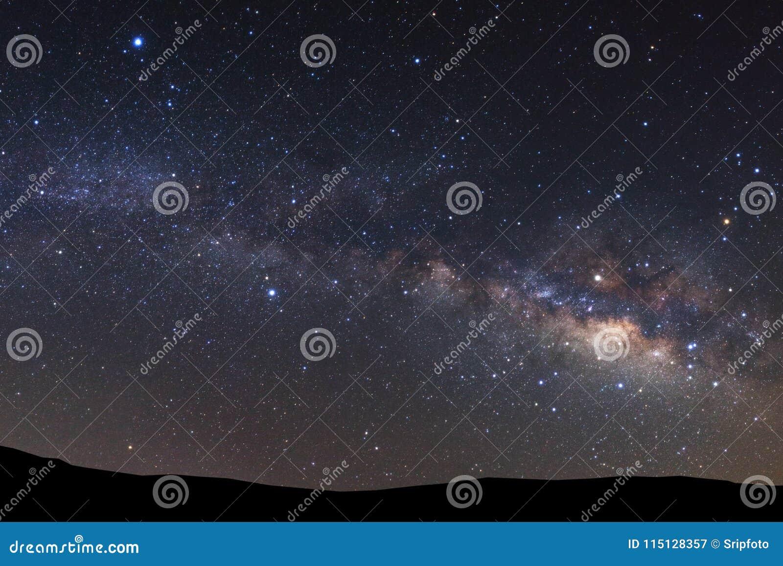 Abbellisca la siluetta dell albero con la galassia della Via Lattea e il dus dello spazio