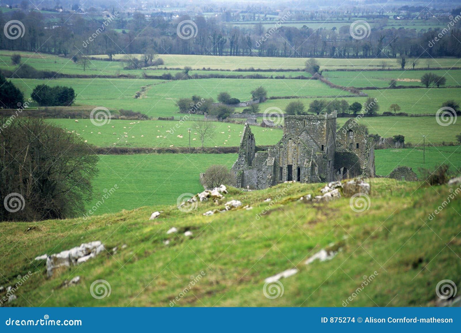 Abbey ruina