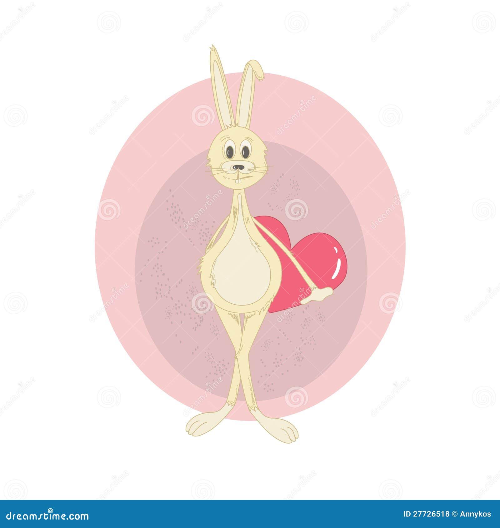 Abbildung des Kaninchens mit Innerem