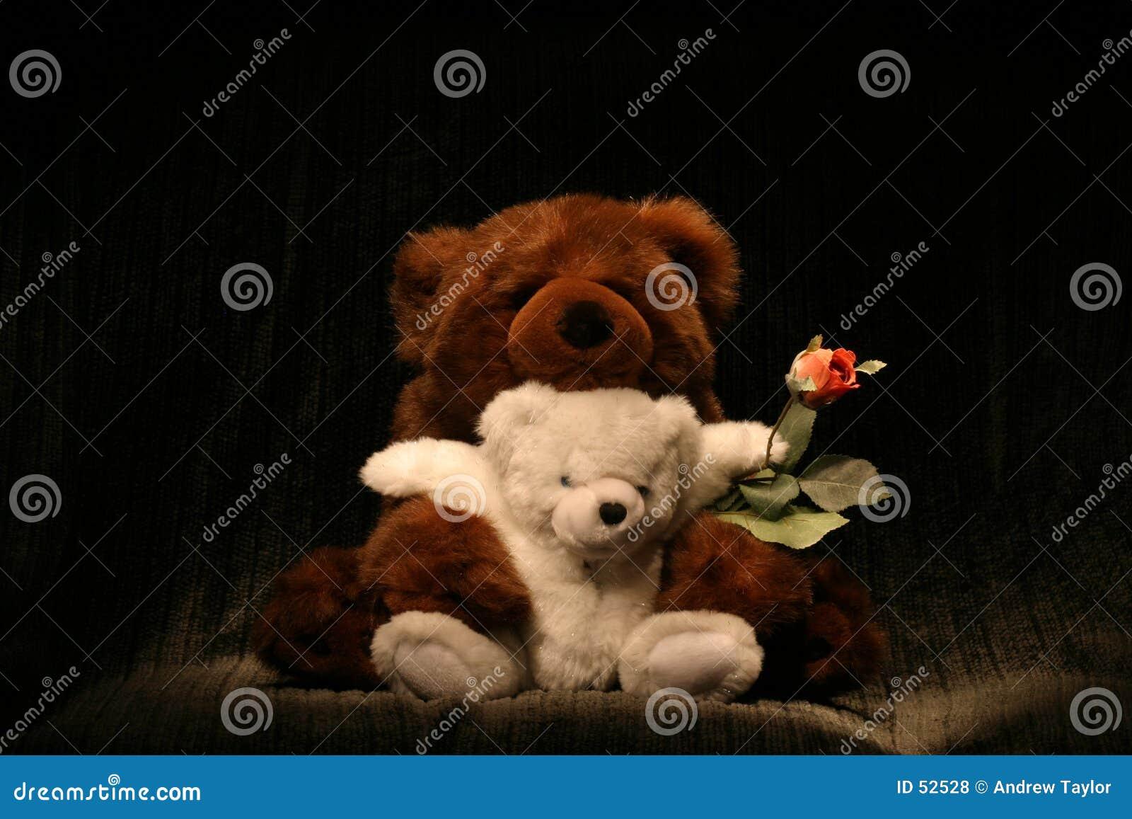 Abbraccio di orso Rosa