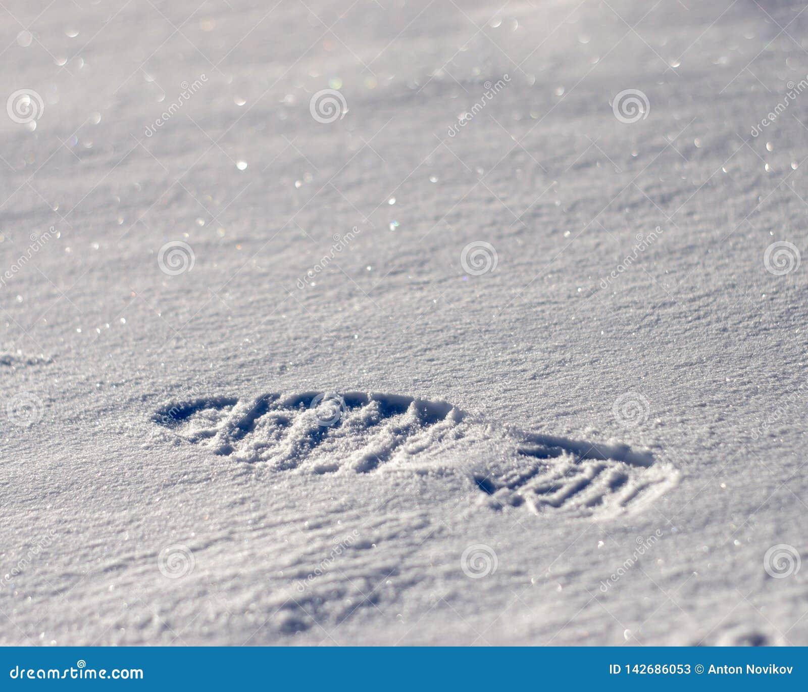 Abdruck auf dem Schnee