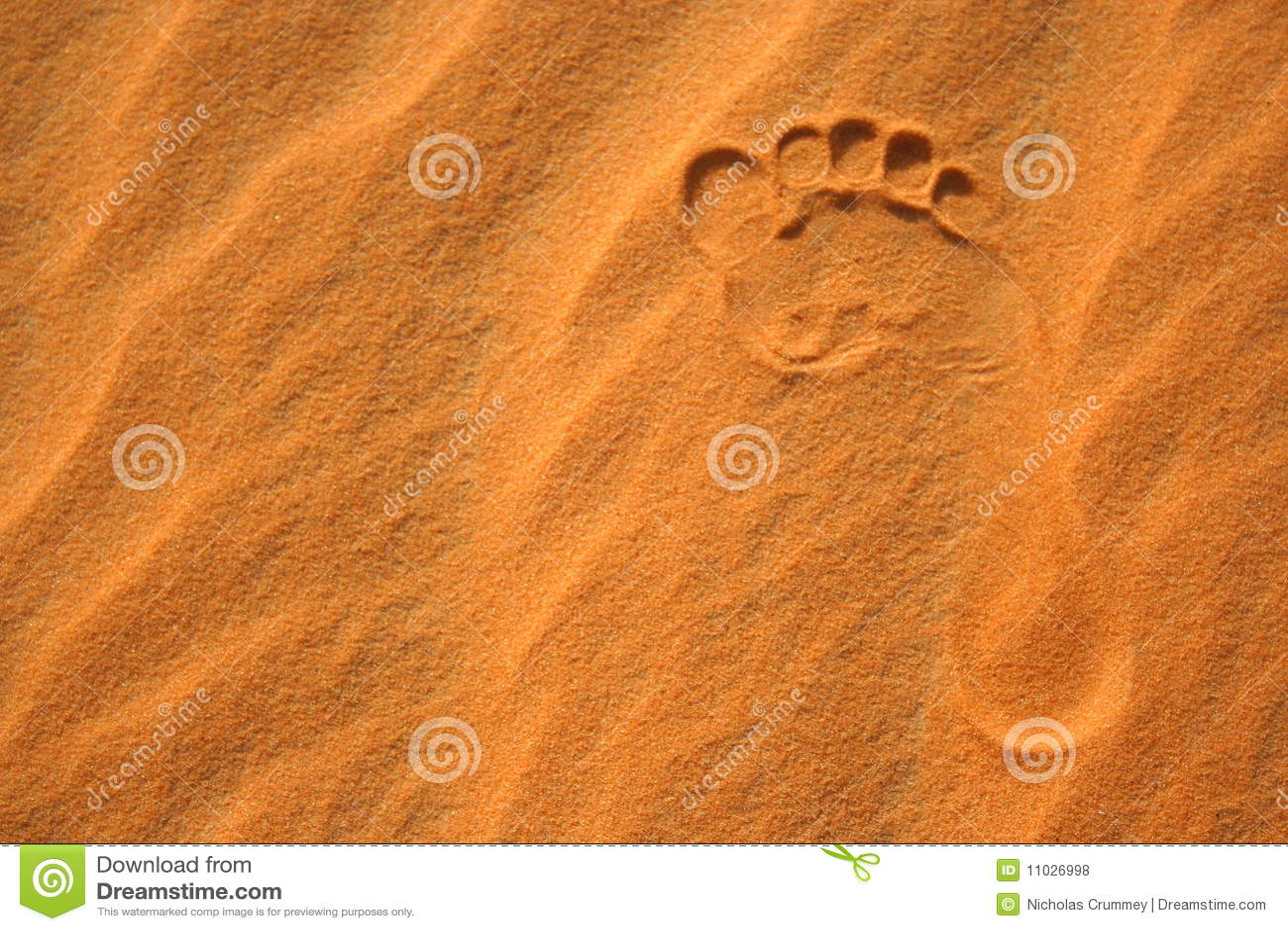 Abdruck im Sand