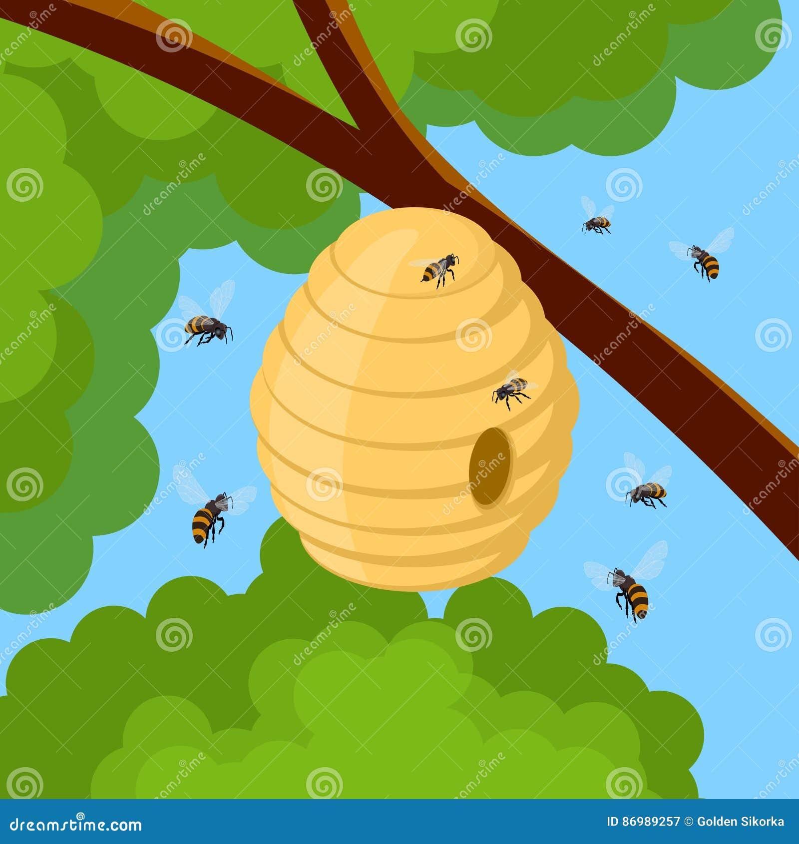 Abeilles et ruche de miel sur la branche d 39 arbre dirigez l - Dessin de ruche d abeille ...
