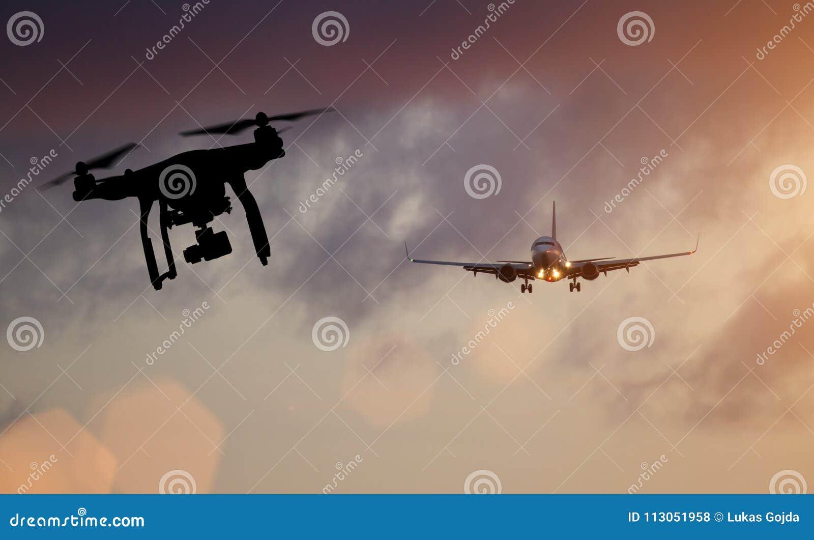 Abejón que vuela cerca del aeroplano comercial