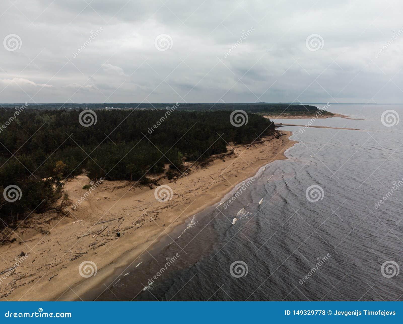 Abej?n hermoso a?reo tirado del mar con las ondas durante un tiempo melanc?lico embotado con el viento y la lluvia tempestuosos -