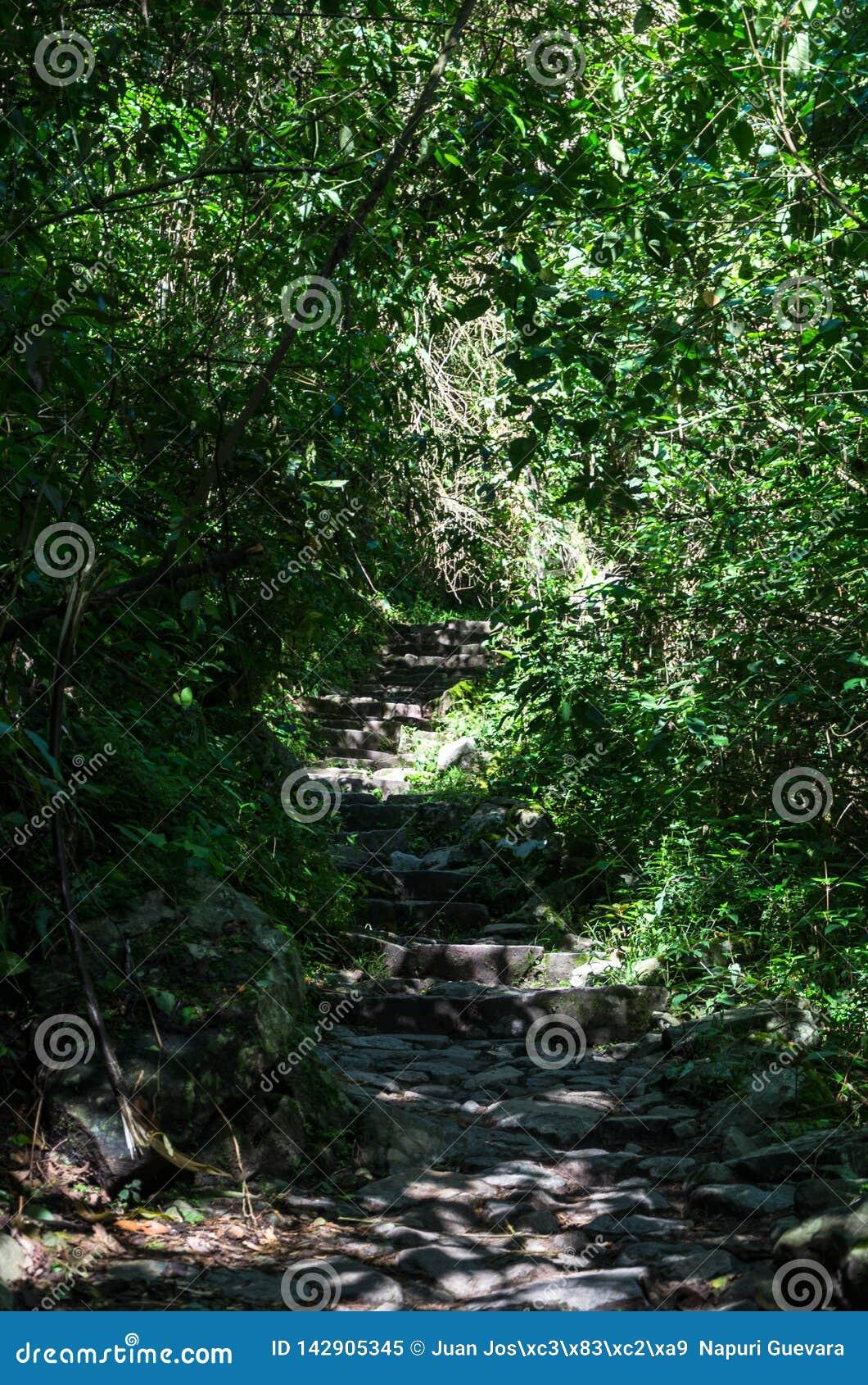 Abenteuer-Trekking auf Inca Trail zu Machu Picchu, Peru