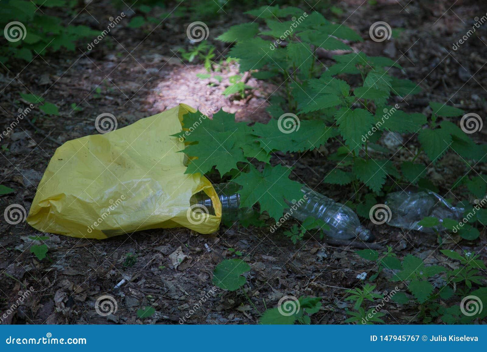 Abfallspeicherauszug im Wald