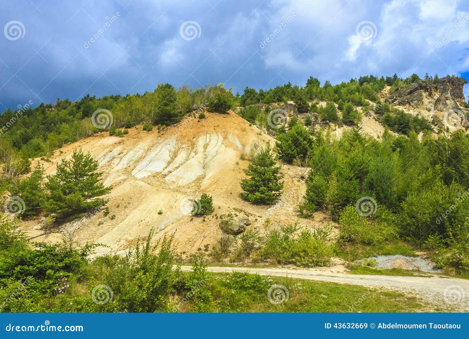 Abholzung und Abnutzung