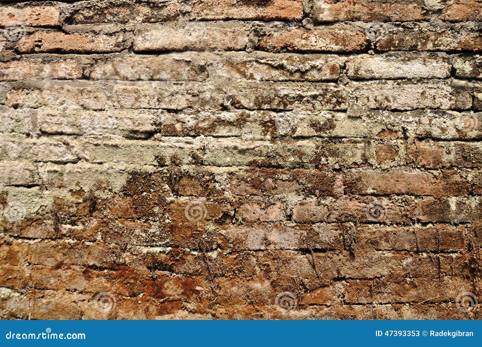 Abrégé sur grunge et milieux vieille texture de mur de briques