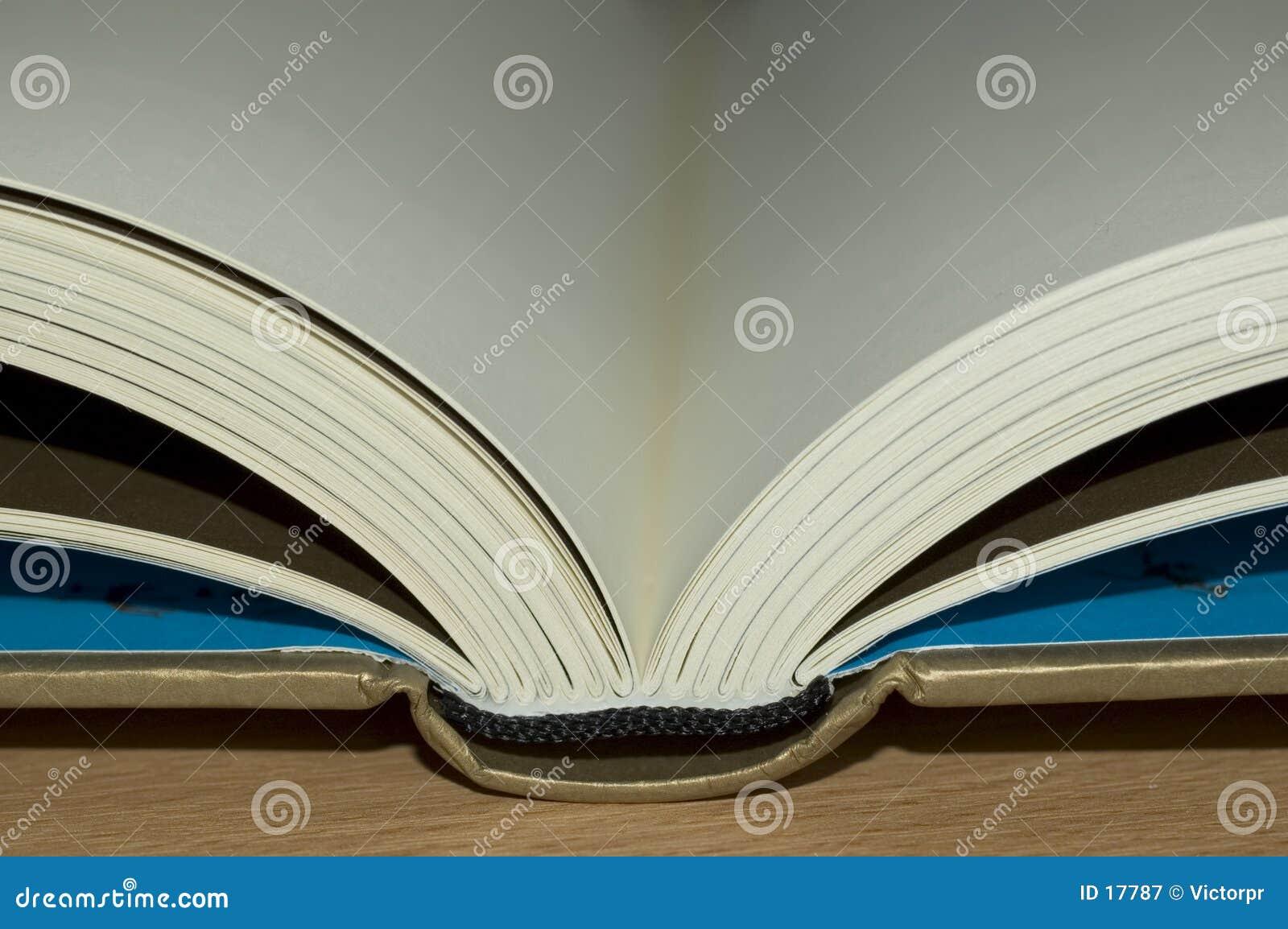 Abra el libro