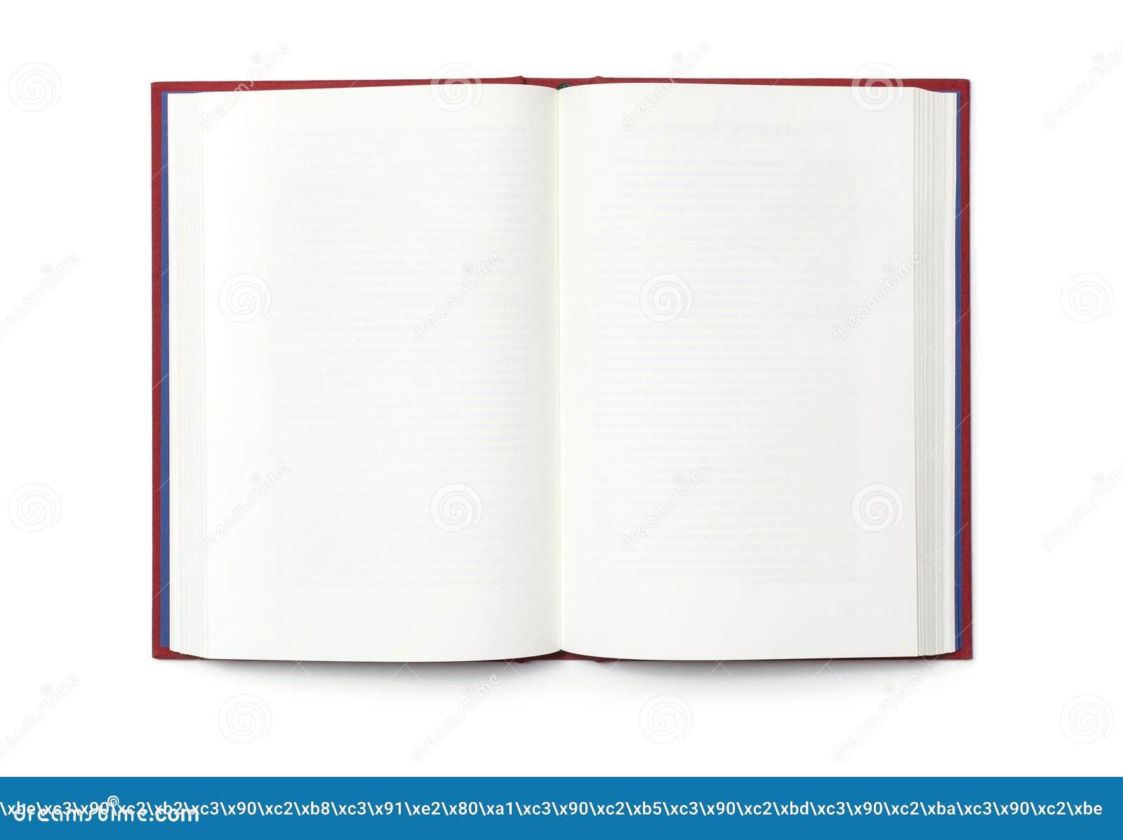 Abra el libro aislado