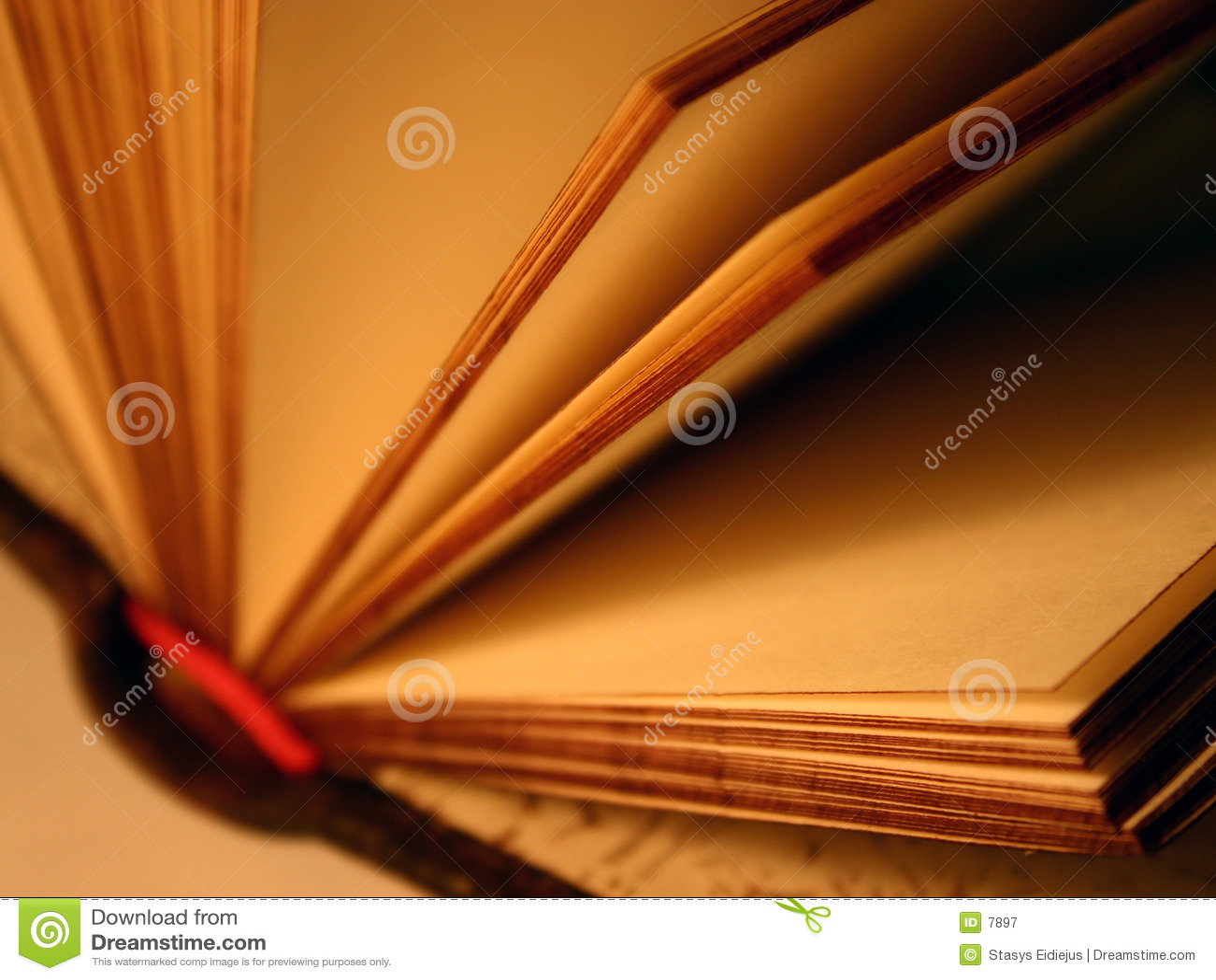 Abra el libro del recuerdo
