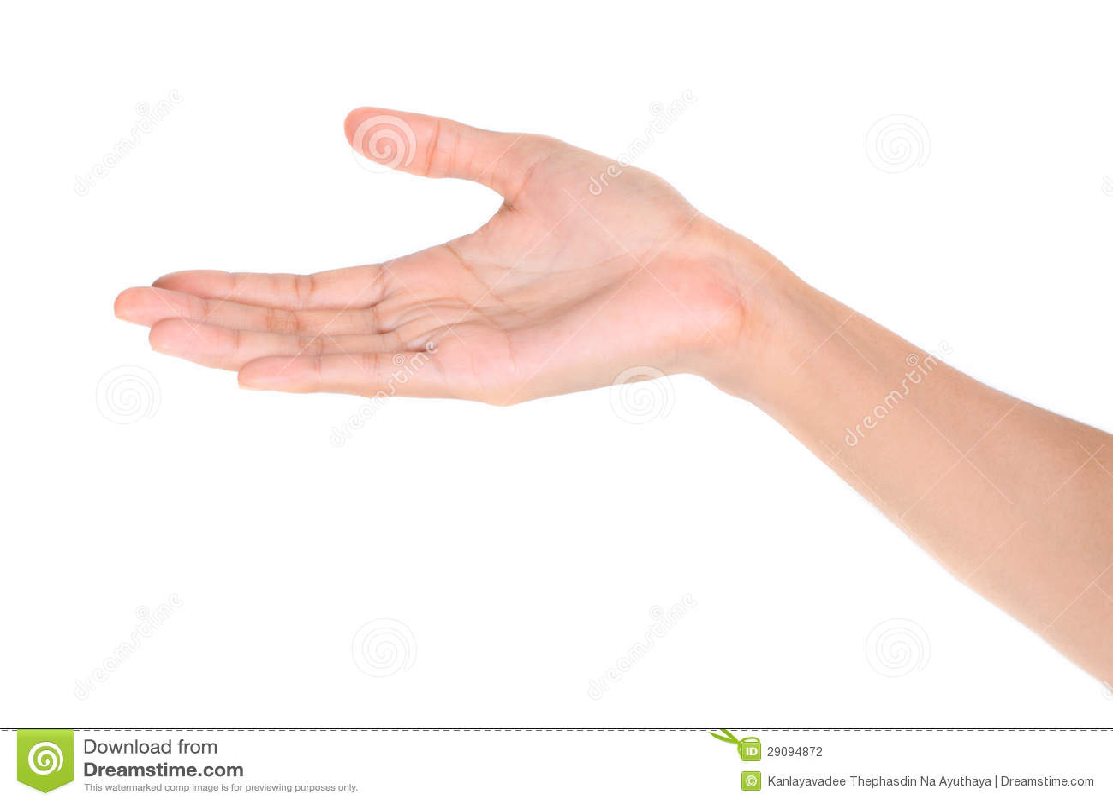 Abra la mano de la palma