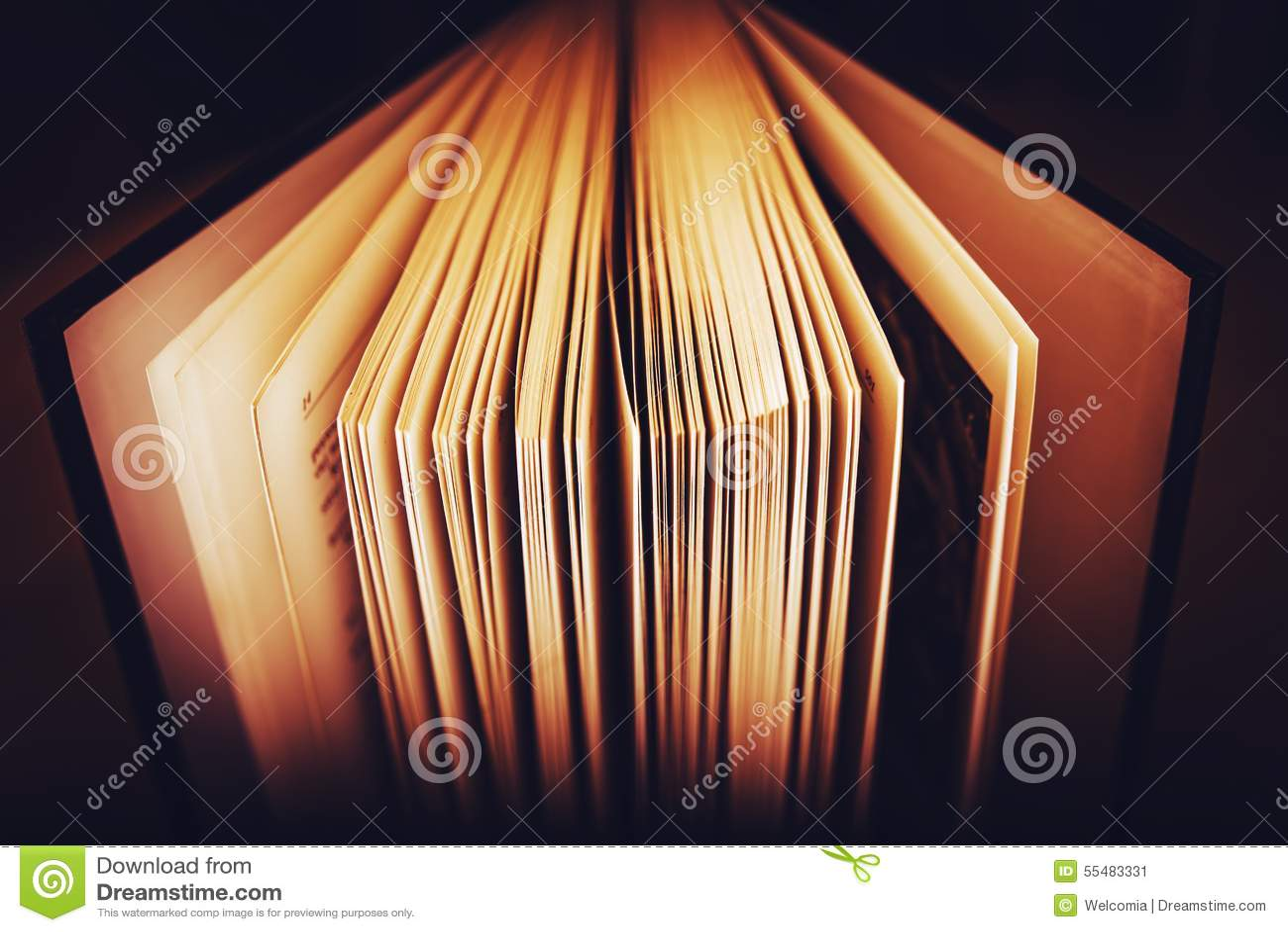 Abra las paginaciones del libro