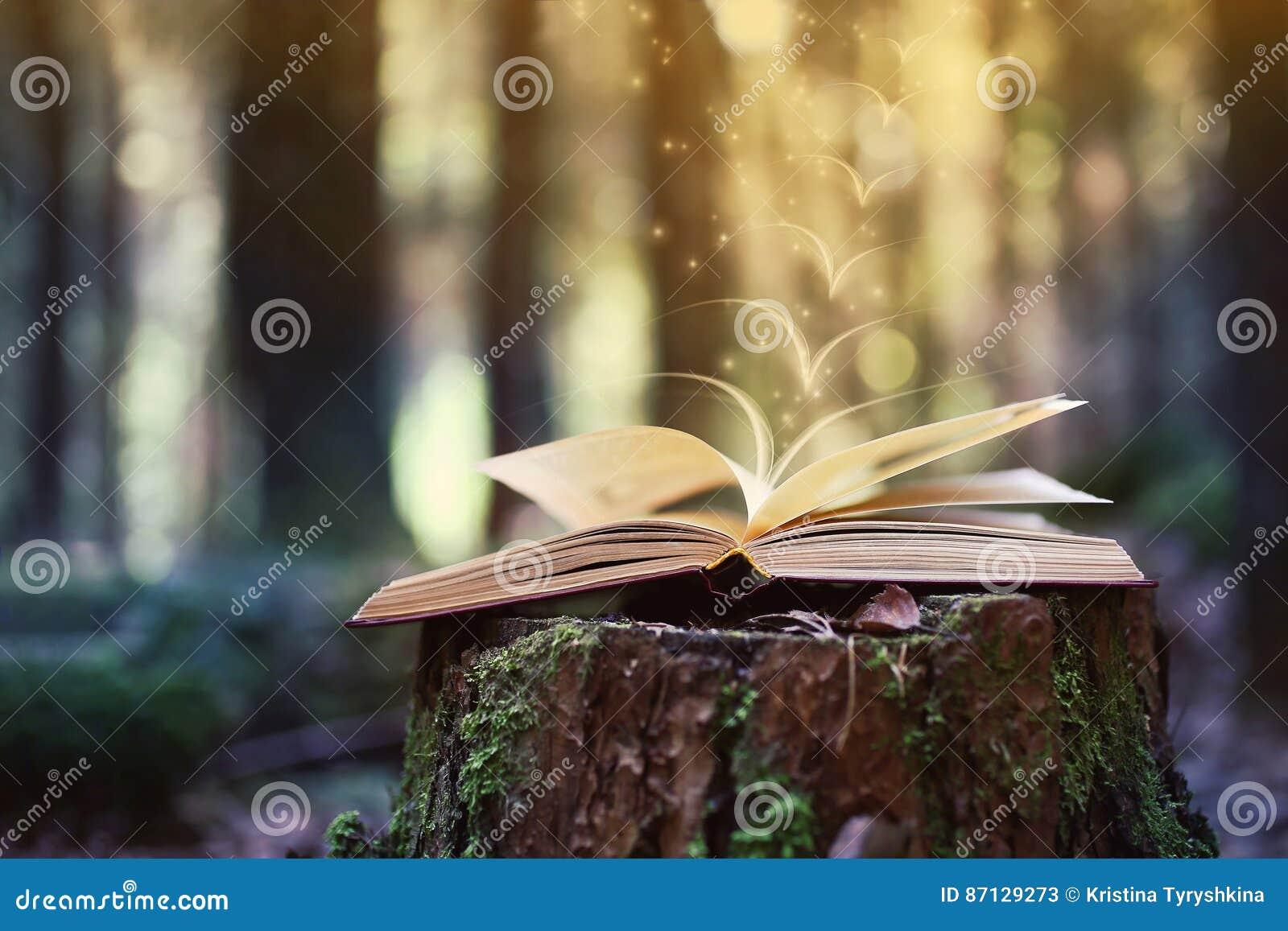 Abra los libros al aire libre El conocimiento es potencia Reserve en un libro del bosque en un tocón