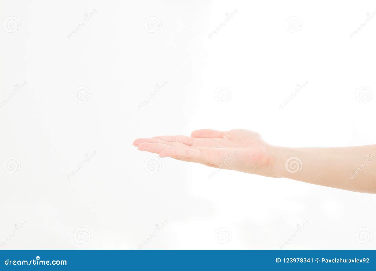 Abra a mão, palma isolada acima no fundo branco Front View Zombaria acima Copie o espaço molde blank