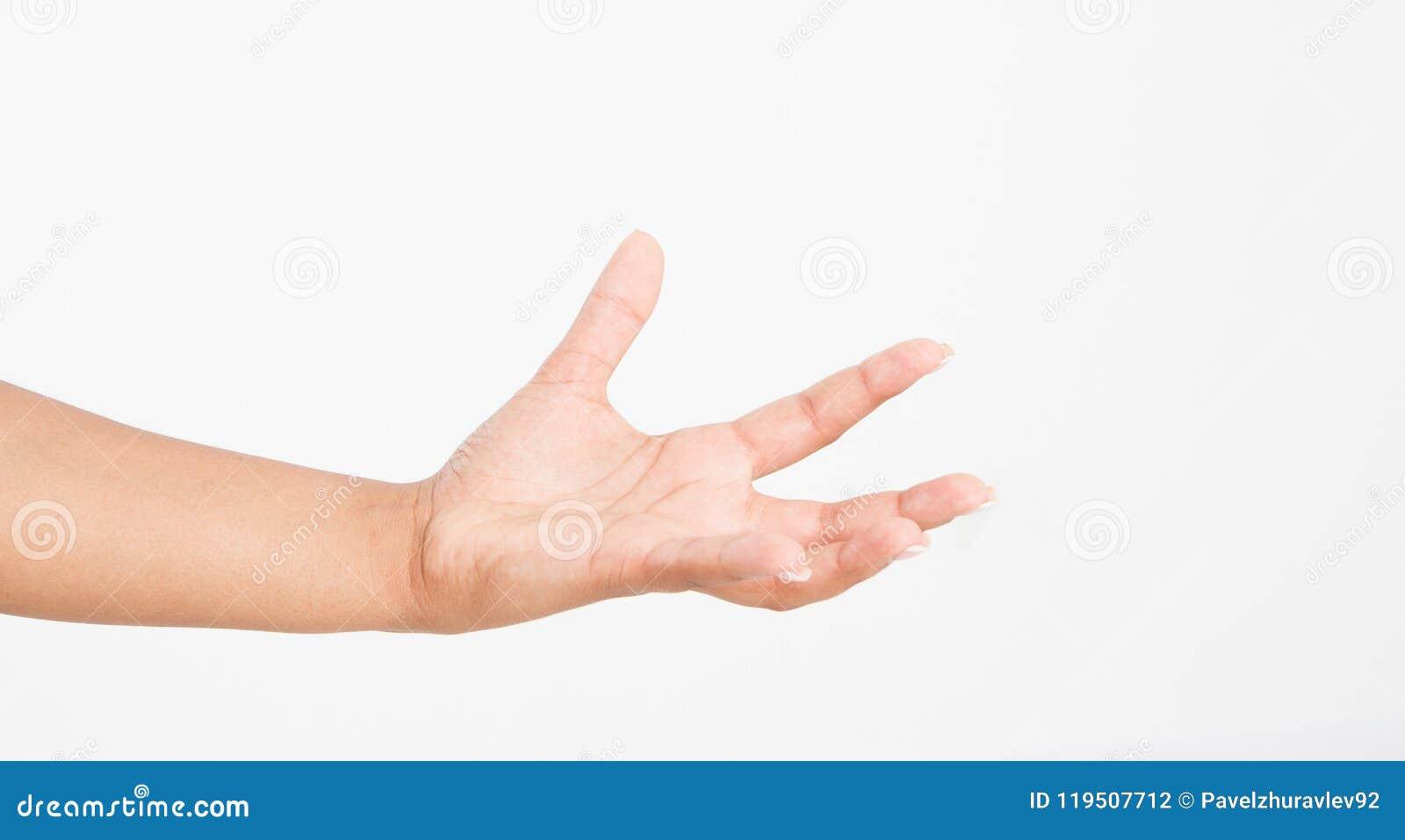 Abra uma mão do ` s da mulher negra, palma isolada acima no fundo branco Front View Zombaria acima Copie o espaço molde blank