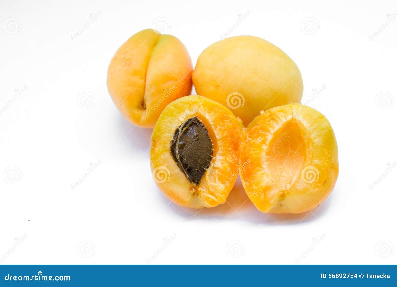 Abricot sain avec la pierre d isolement