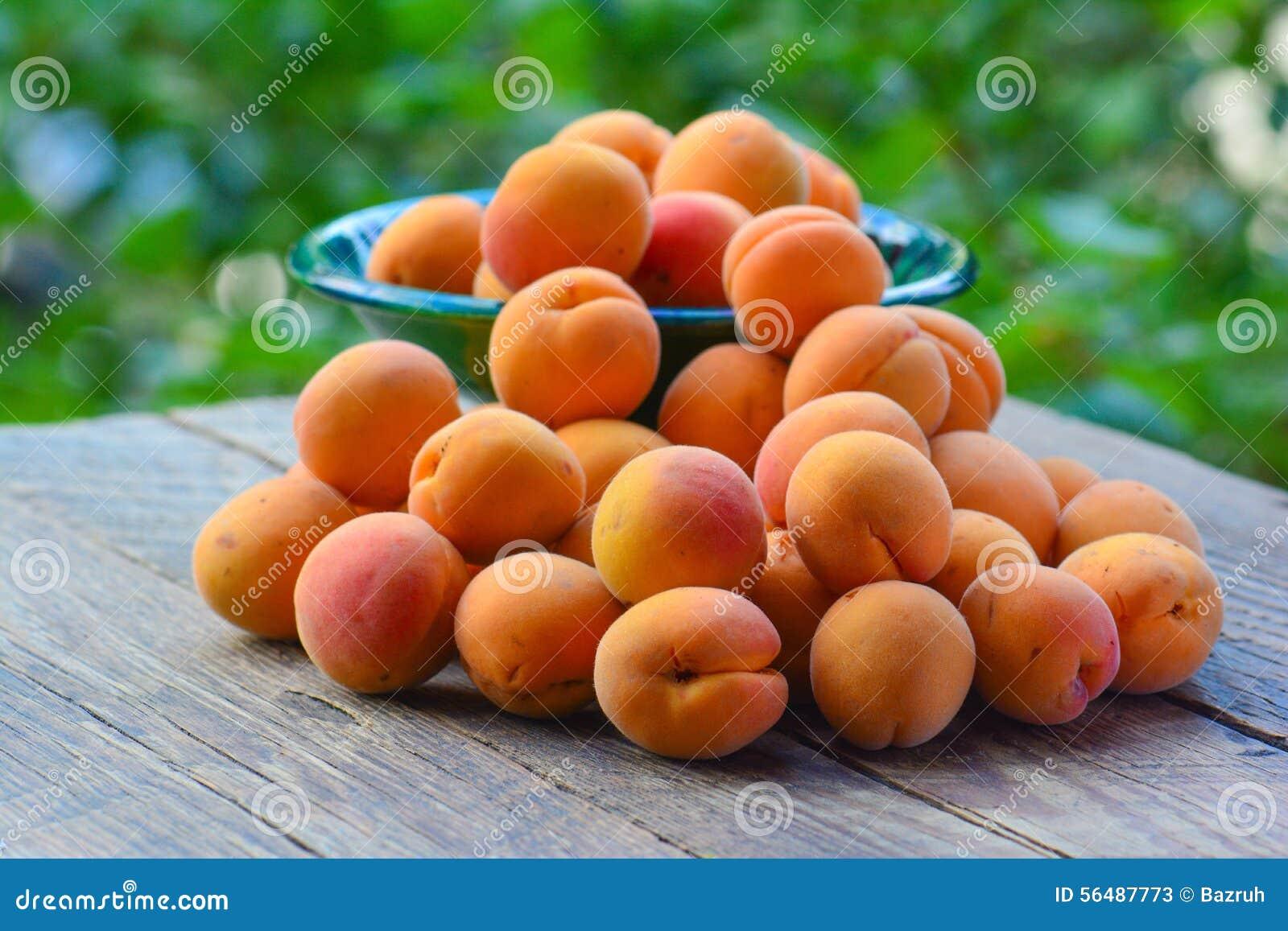 Abricots organiques frais