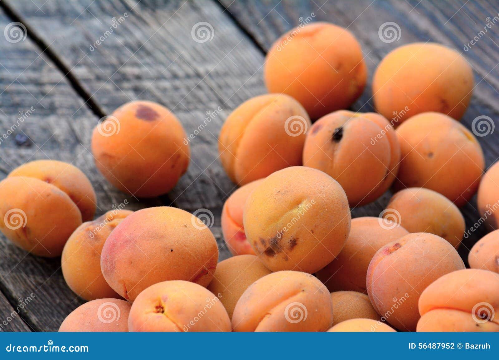 Abricots organiques frais sur la table en bois