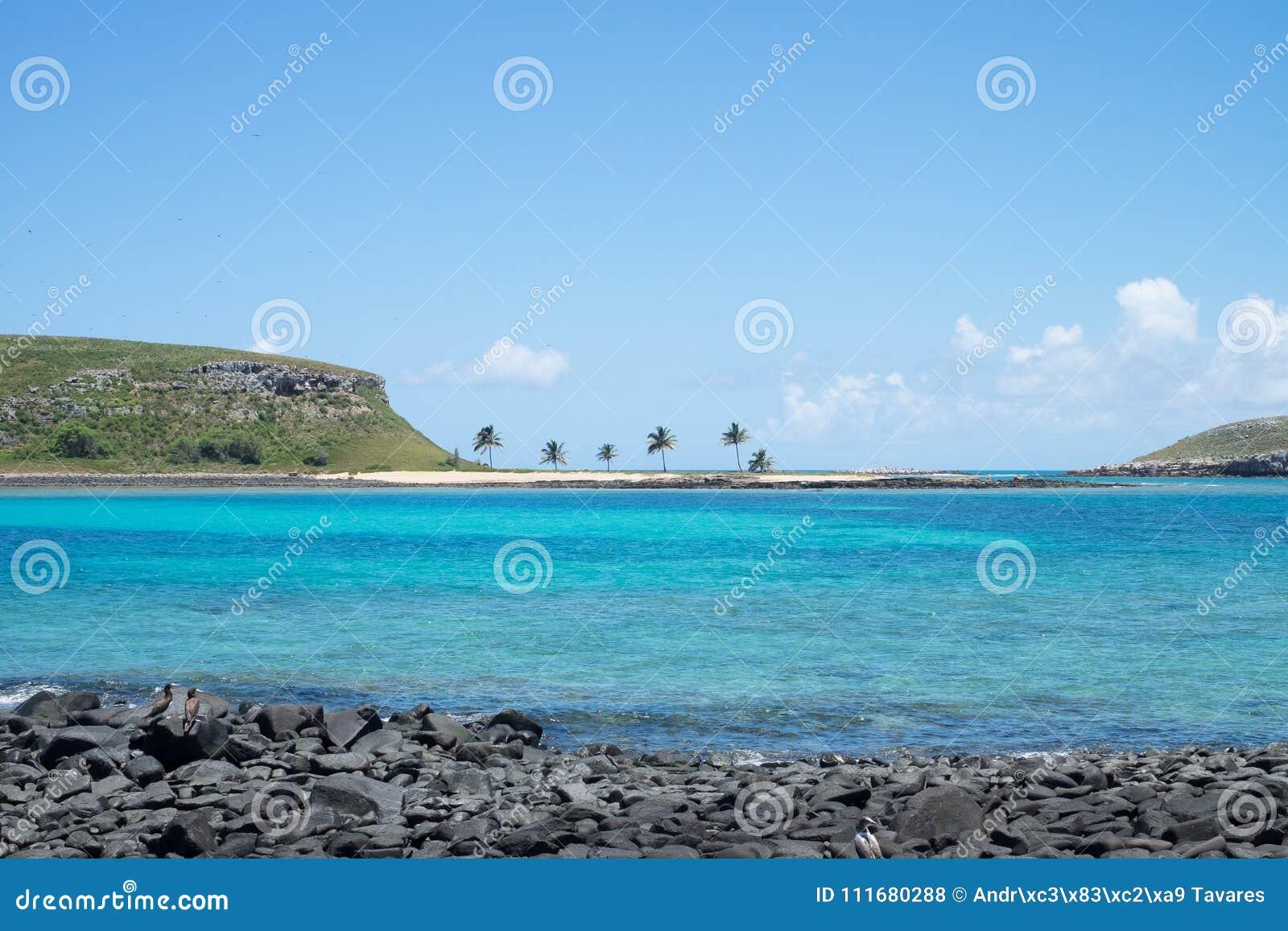 Abrolhos archipelago, south of Bahia, Brazil