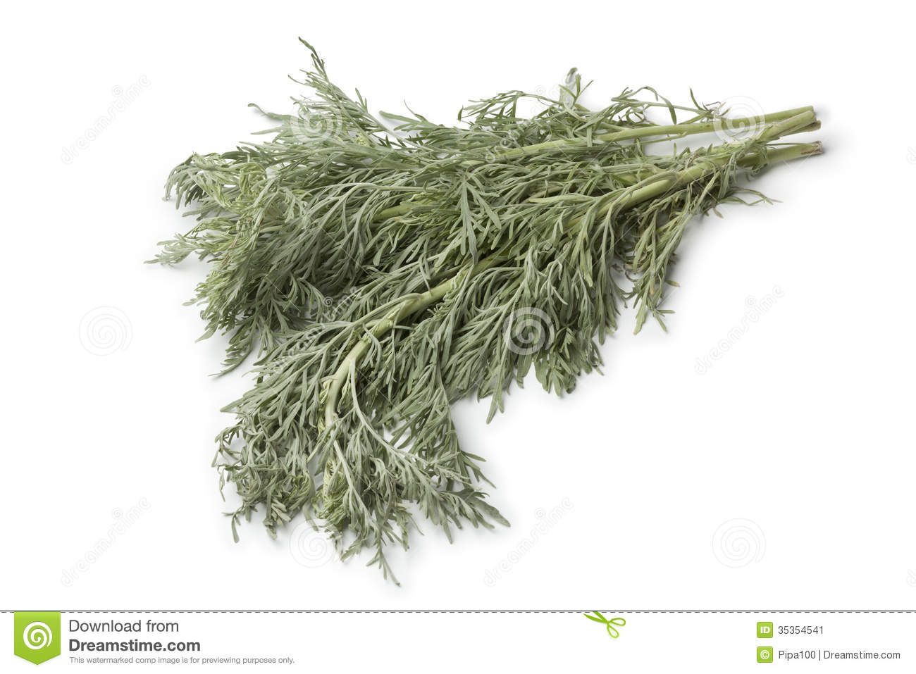 Absinthe fra che d 39 armoise image stock image 35354541 for Plante whisky