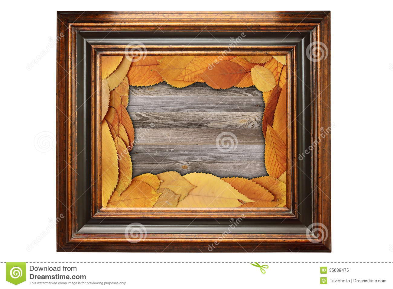 Abstract Backdrop With Painting Fram E Stock Image Image