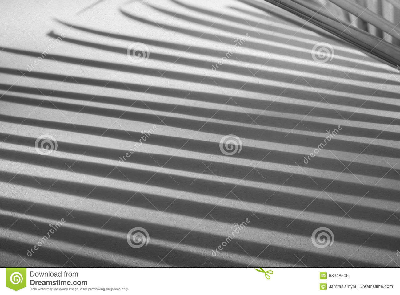 Abstract background of shadow palm leaves on concrete rough texture wall.
