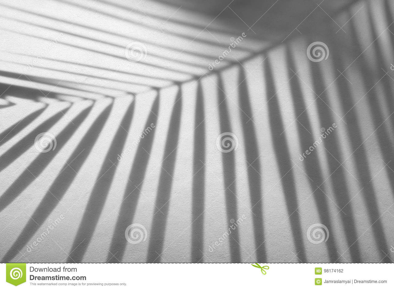 Abstract background of shadows palm leaf on a white wall.
