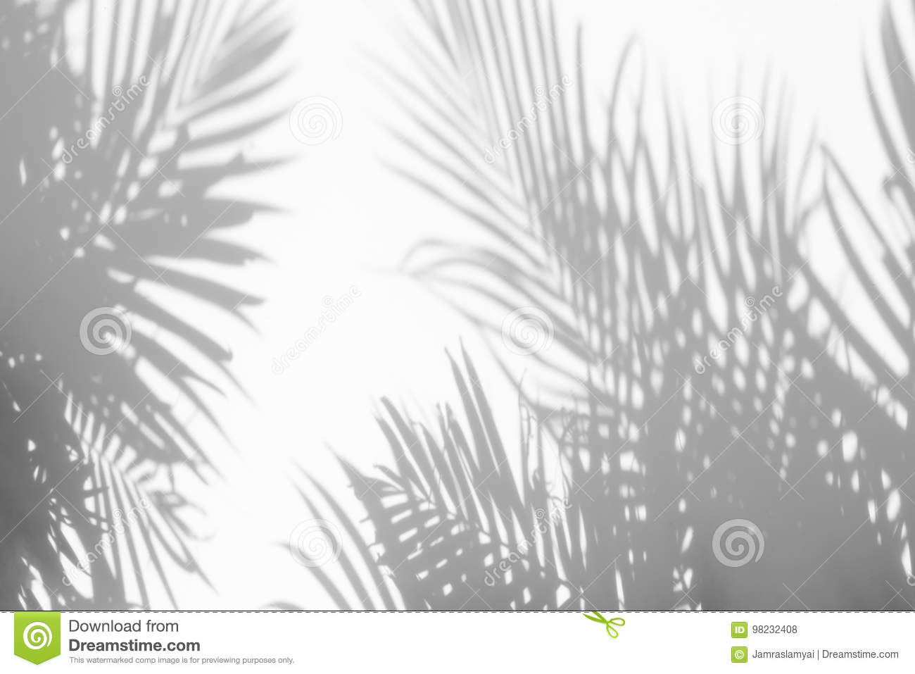 Abstract background of shadows palm leaves on a white wall.