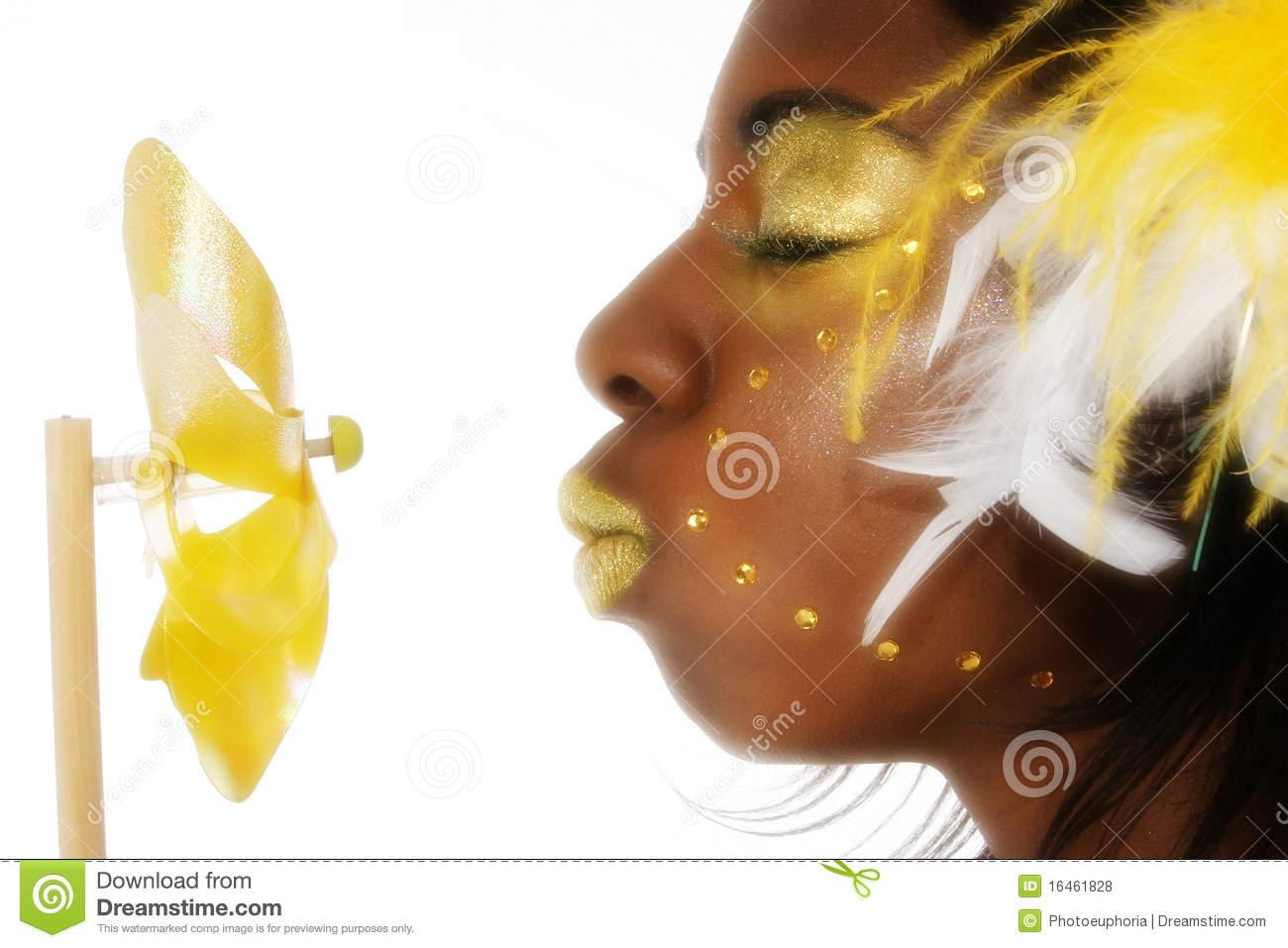 Abstract Black African American Beauty
