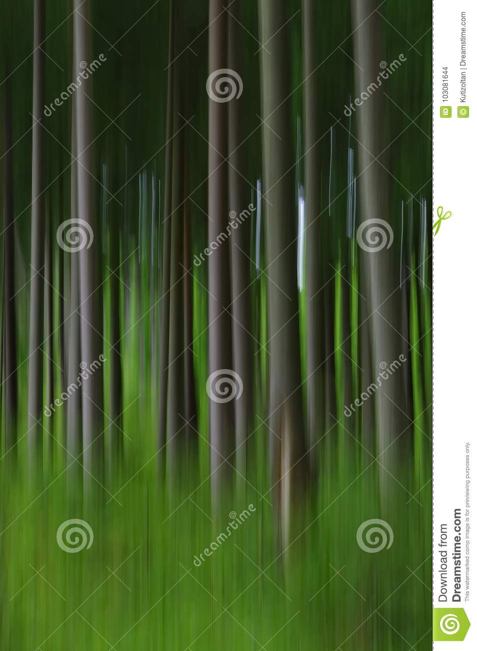 Abstract blurry pine tree forest