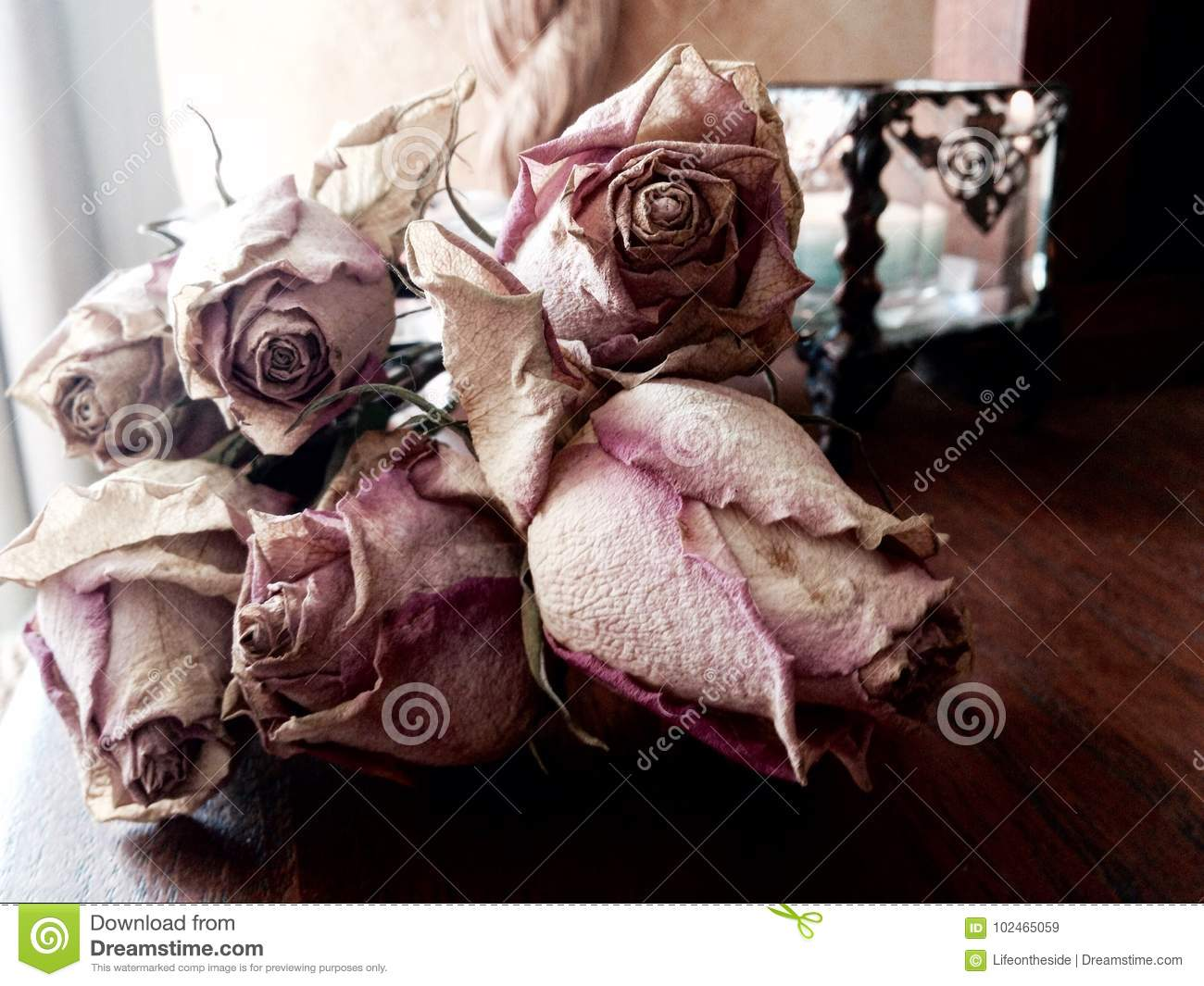Abstract bunch dead dried pink roses concept death, loss, grief