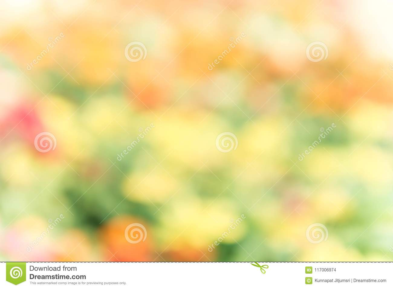 318 746 Nature Blur Background Photos Free Royalty Free Stock Photos From Dreamstime