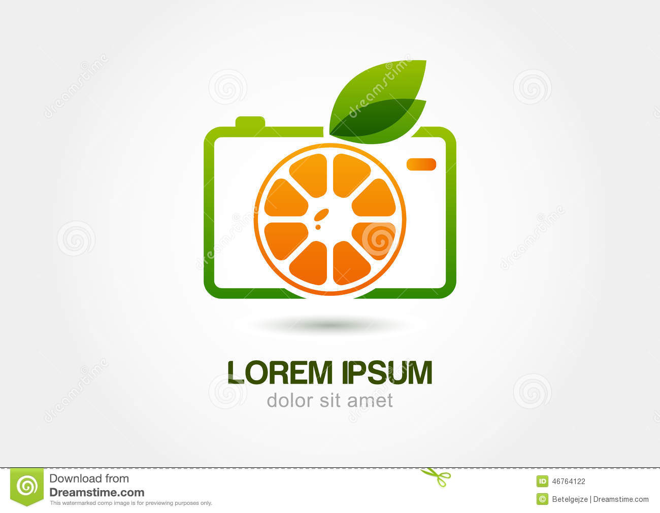 Abstract colorful orange fruit photo camera. Vector logo icon template.