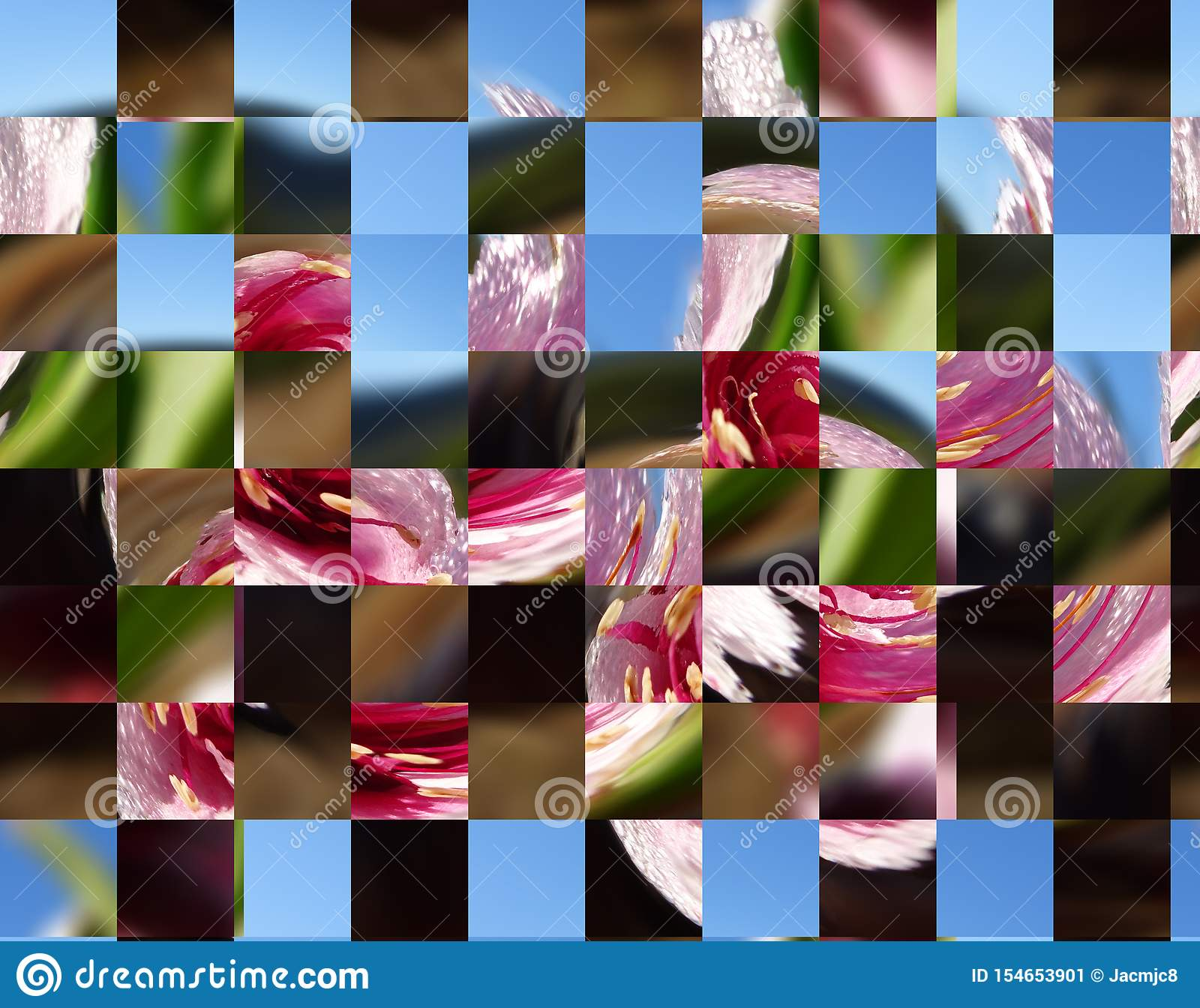 Abstract conceptual backdrop environment creative artistic new texture colours shapes details fun swirls twist from nature flowers