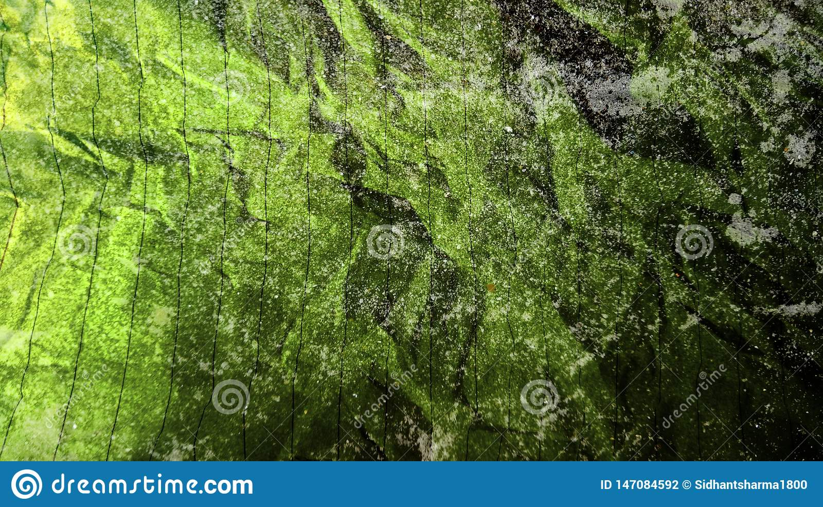 Abstract crumpled paper black martian green color mixture multi colors effects wall texture Background.
