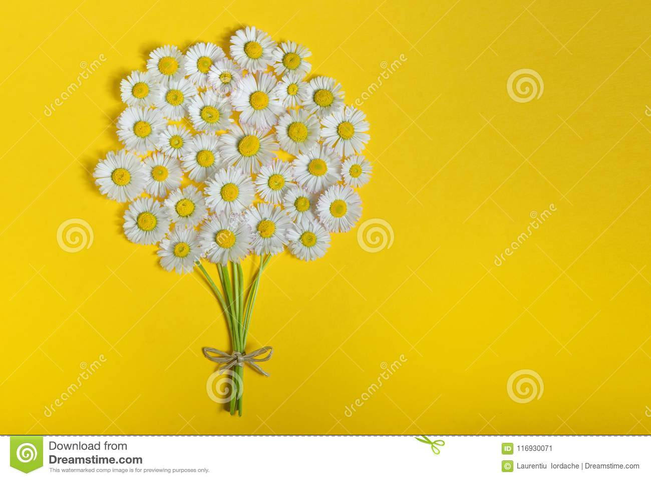 Abstract Daisy Flower Bouquet Stock Image Image Of Margarita