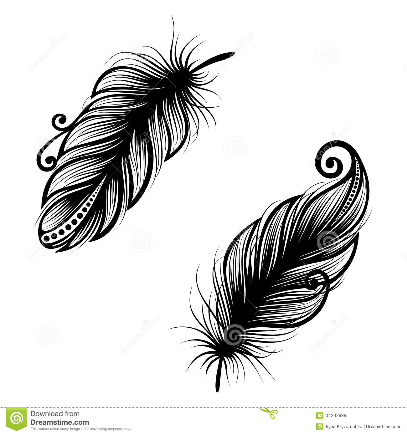 abstract feather bird stock vector image of isolated 34242989. Black Bedroom Furniture Sets. Home Design Ideas