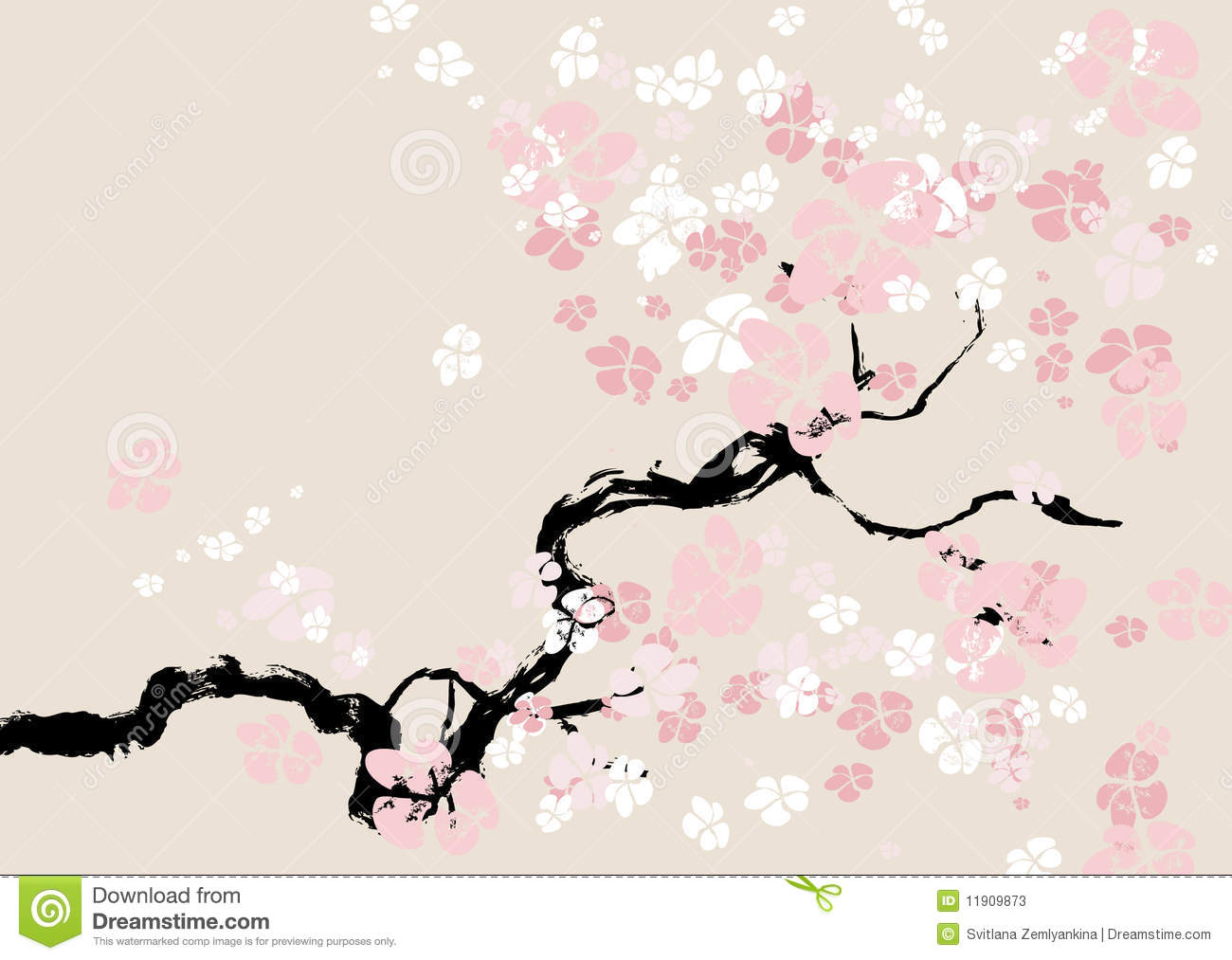 Floral Background Cherry Blossom Stock Photos Image 11909873