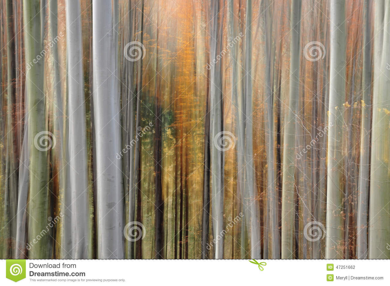 Abstract forest blur