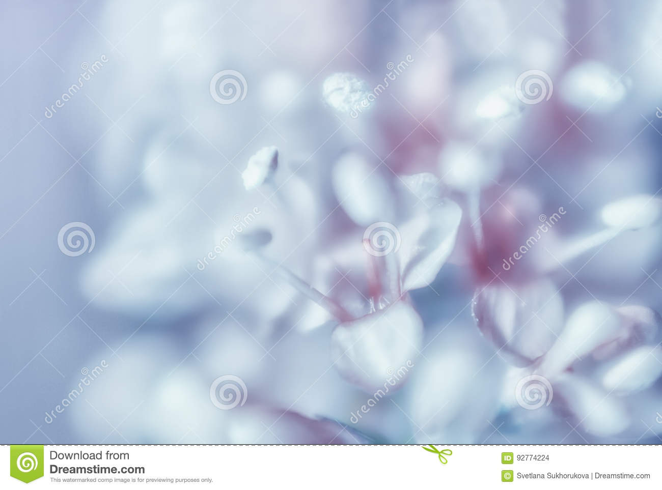 Abstract Gentle Light Blue Floral Background Stock Photo