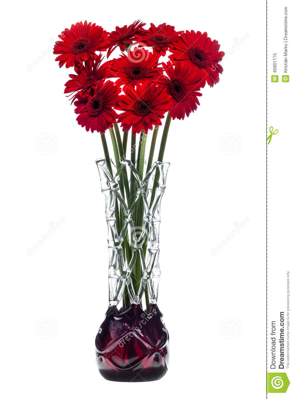 Abstract glass vase on white background with red gerbera flowers abstract glass vase on white background with red gerbera flowers reviewsmspy