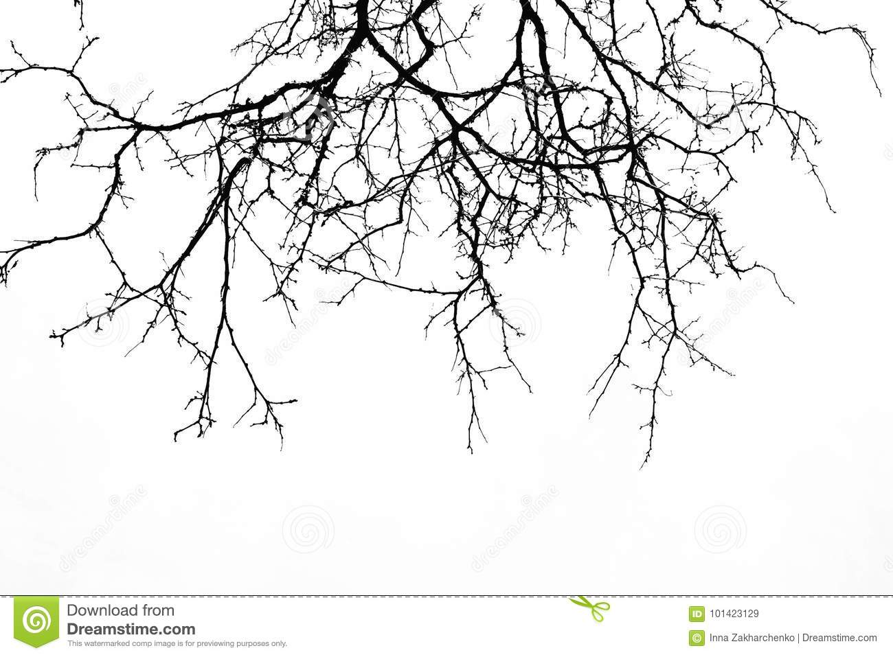 Abstract Halloween Background Black Branch Of Tree On A White B Stock Image Image Of Background Halloween 101423129