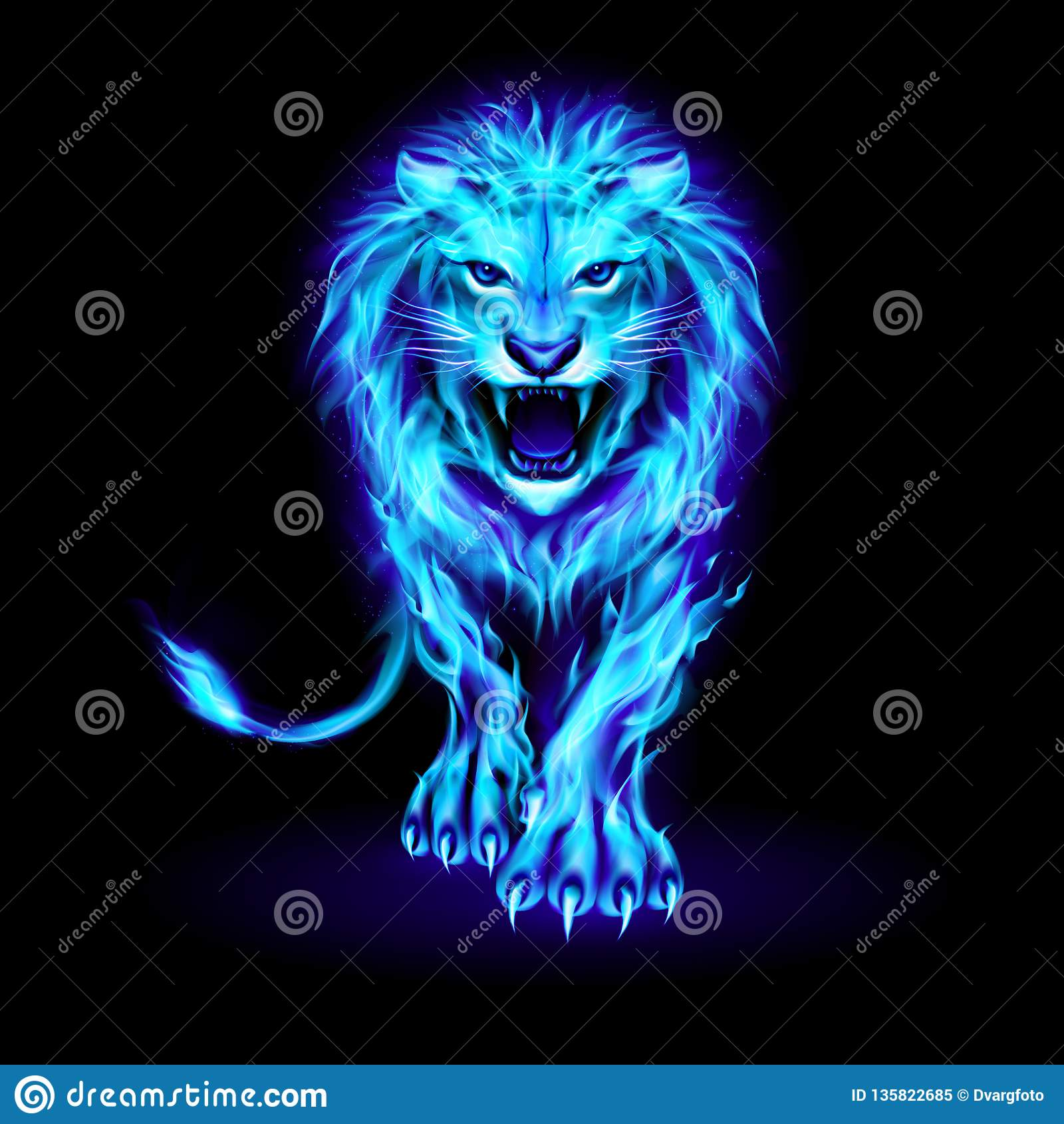 Fire Lion Hd Images Free Download