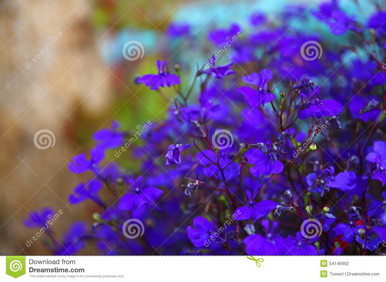 Abstract image of Pink and purple flowers bloom, with glitter overlay