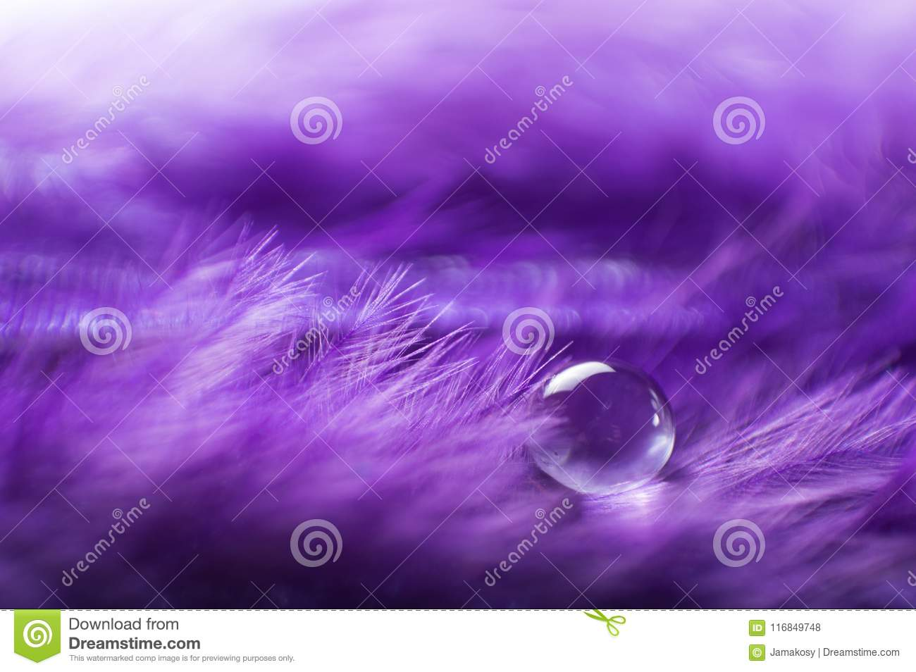 A abstract image of purple color fluffy feathers with one macro water dew drop, beautiful natural background.