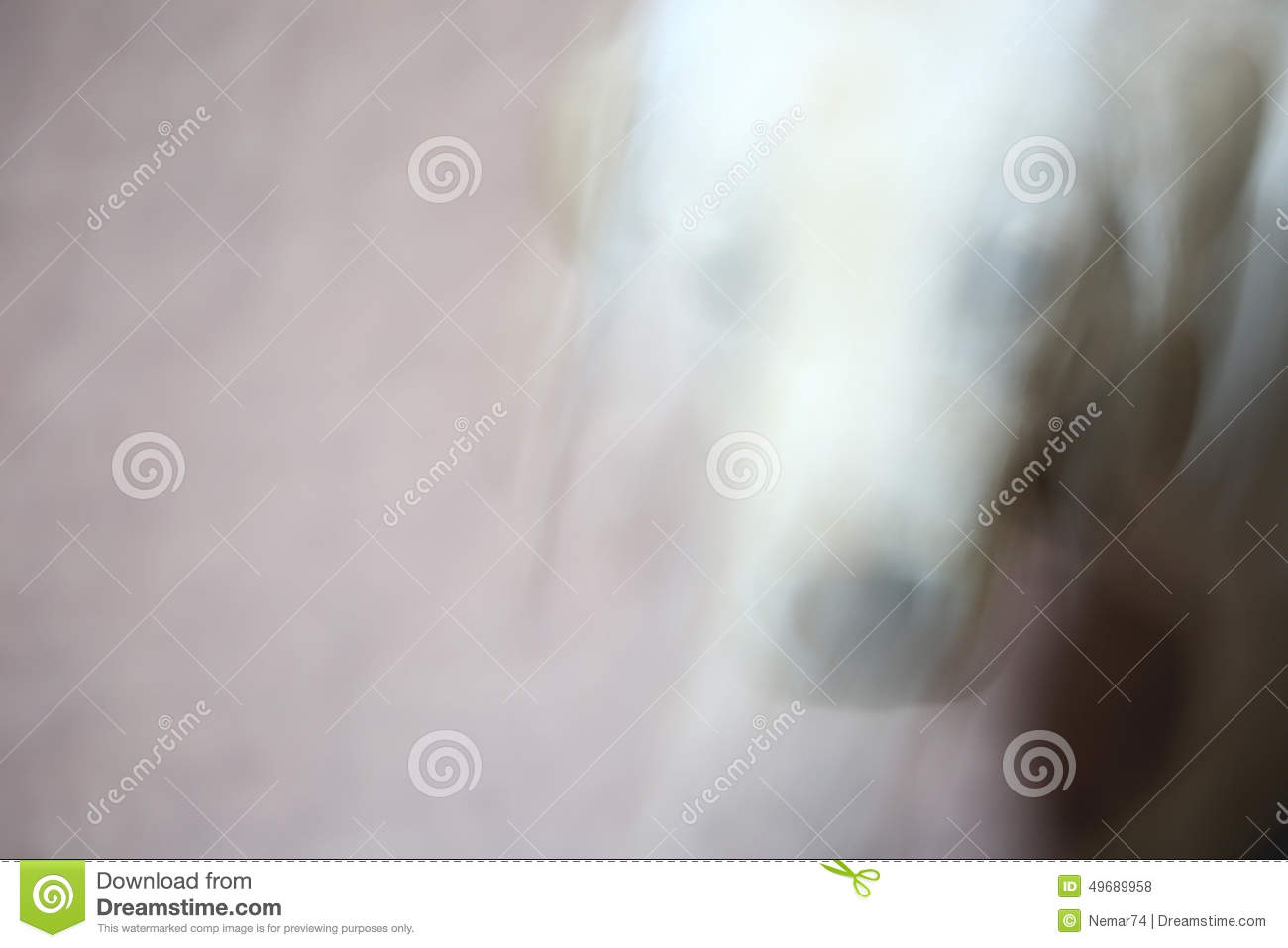 Abstract Motion photo Running puppy dog for background